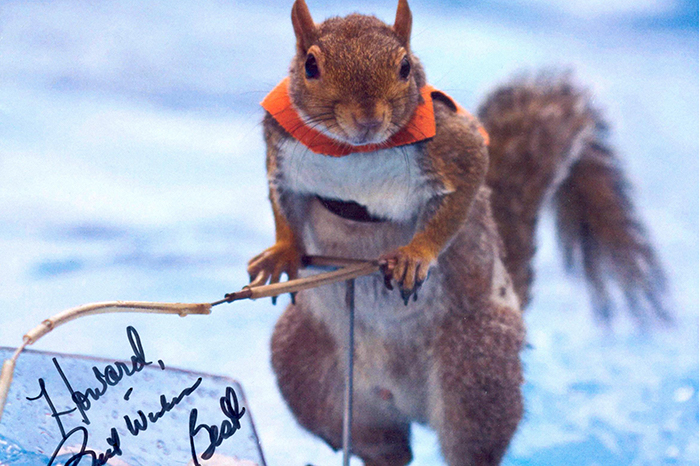 "An autograph from Twiggy the Water-Skiing Squirrel, a past contestant on ""America's Got Talent"""